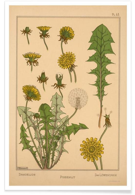 Mælkebøtter, Vintage, Eugene Grasset - Dandelion 43 Plakat