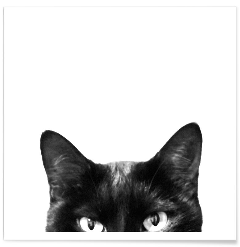 Chats, Noir & blanc, Caught in the Act affiche