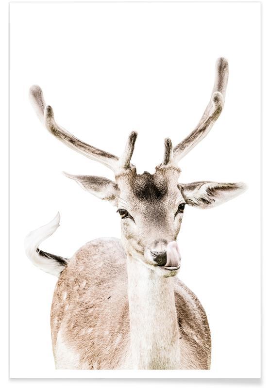 Deer I Poster