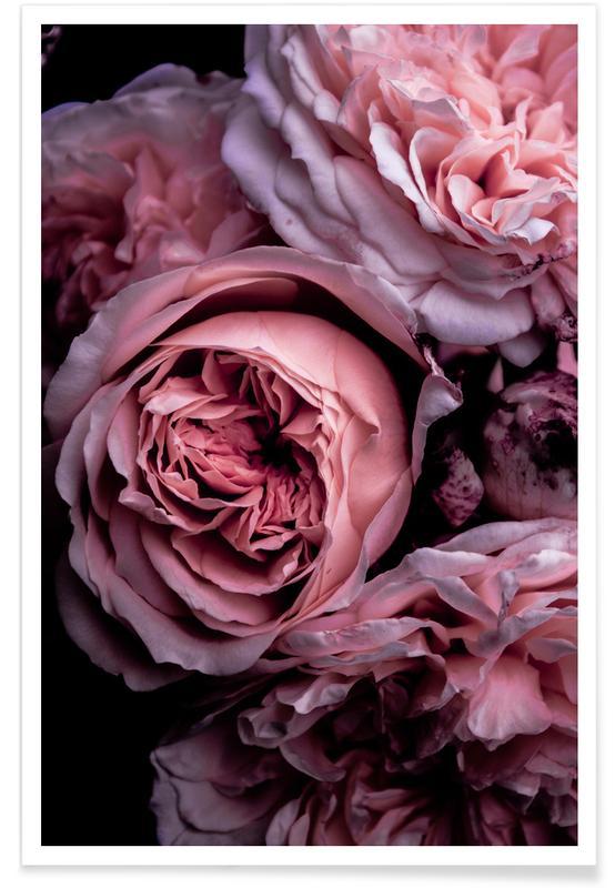 Vintage Pink Poster
