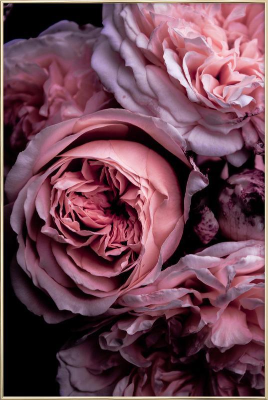 Vintage Pink -Poster im Alurahmen