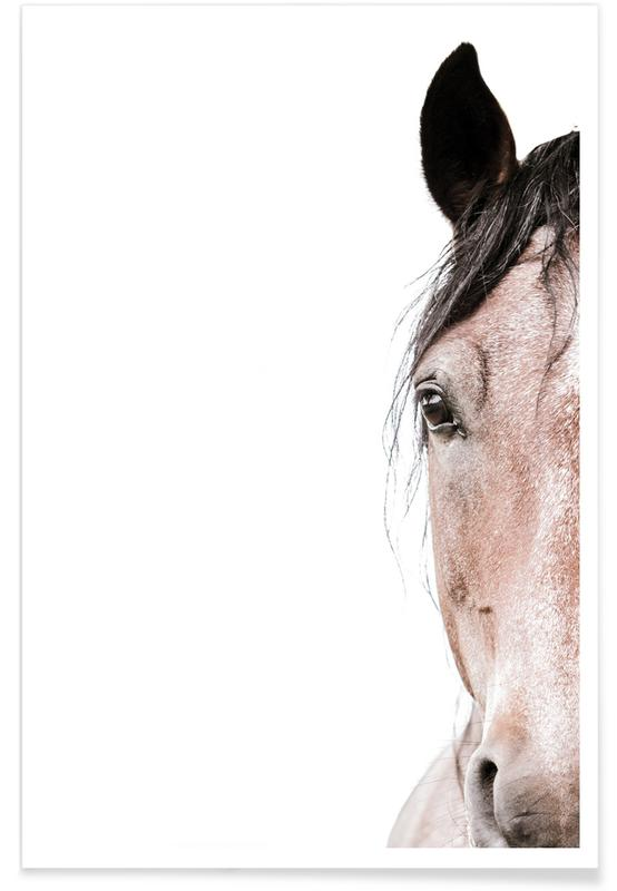 Chevaux, Horse affiche