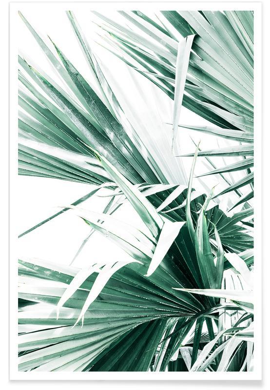 Palmen, Palm Leaves -Poster