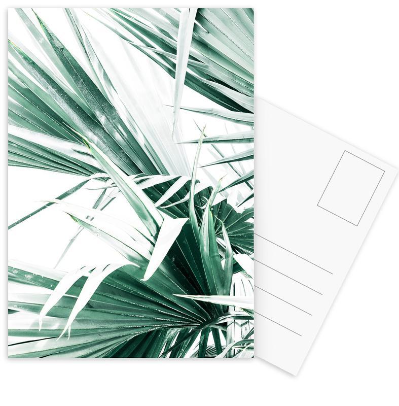 Palmen, Palm Leaves -Postkartenset