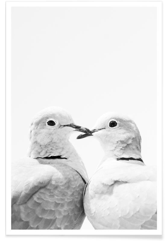 Schwarz & Weiß, Lovers -Poster