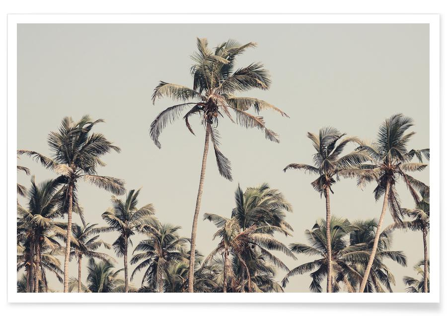 Palmiers, Palm Trees On The Beach affiche
