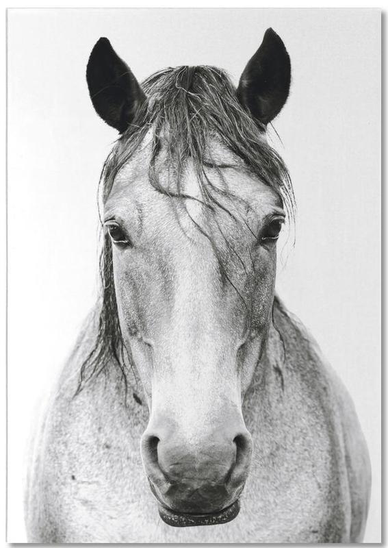 Pferde, Schwarz & Weiß, Horse 2 -Notizblock