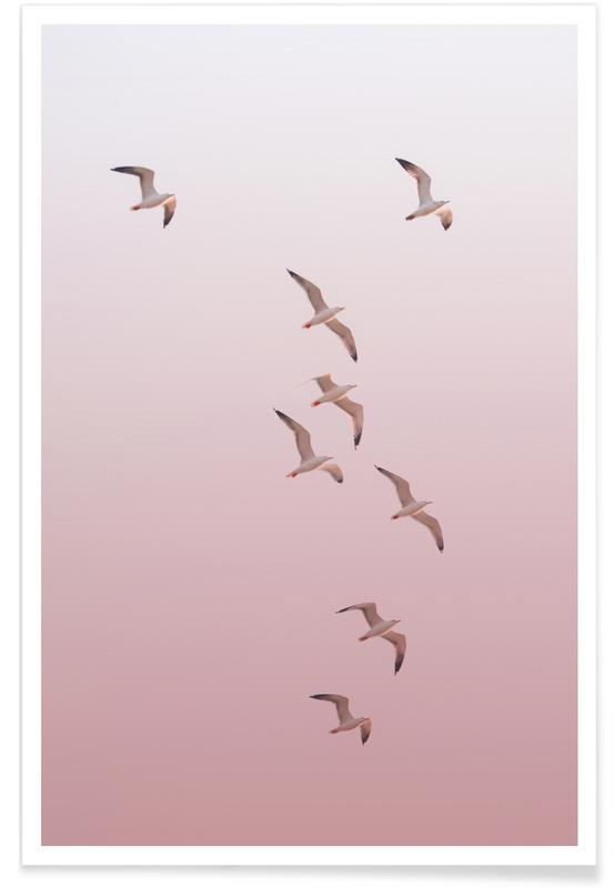 , Birds In The Sky Pink affiche