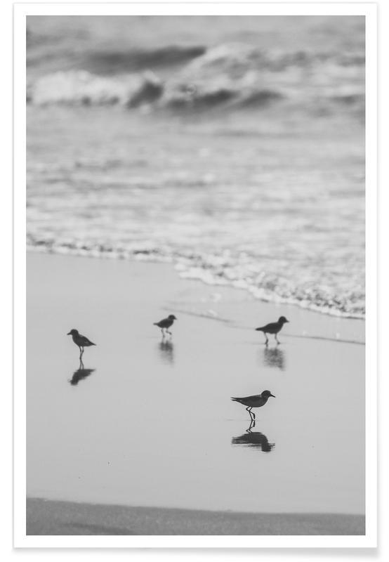 Strände, Beach Club -Poster