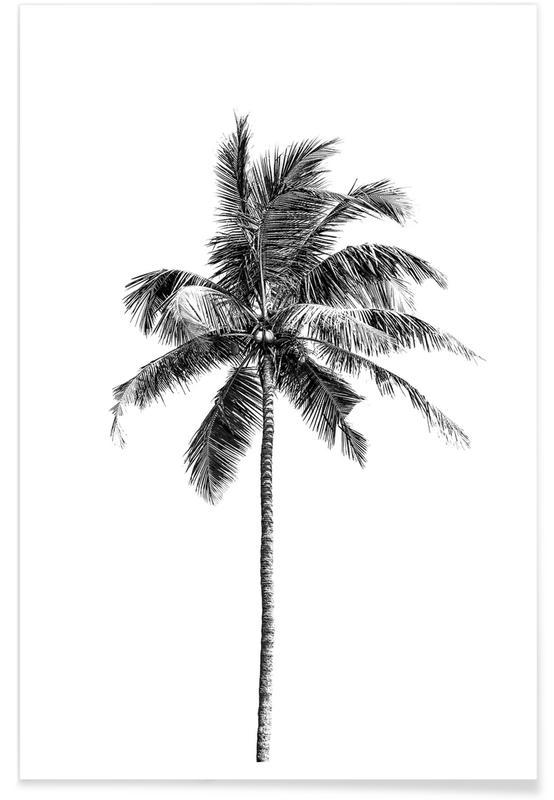 Schwarz & Weiß, Palmen, Palm Tree By The Beach 2 -Poster