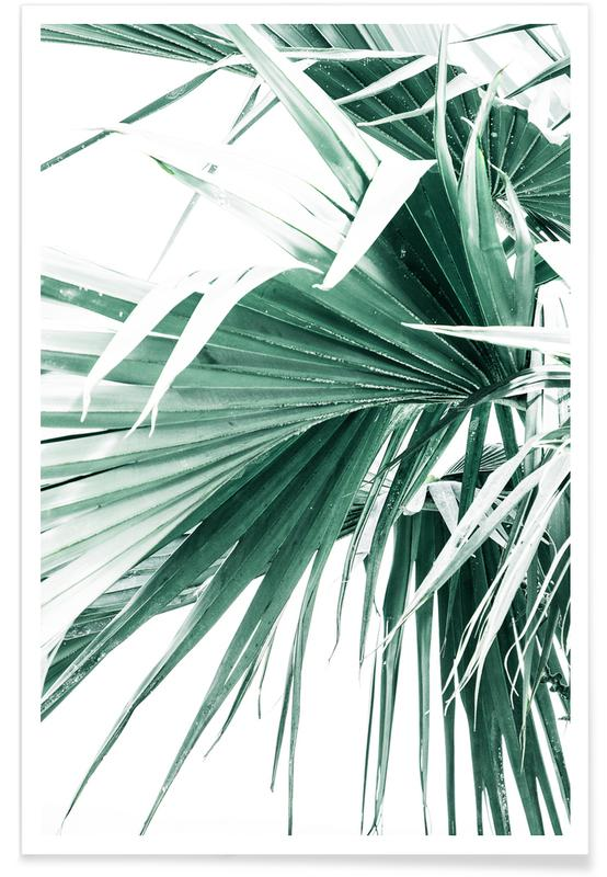 Palmbomen, Palm Leaves 2 poster