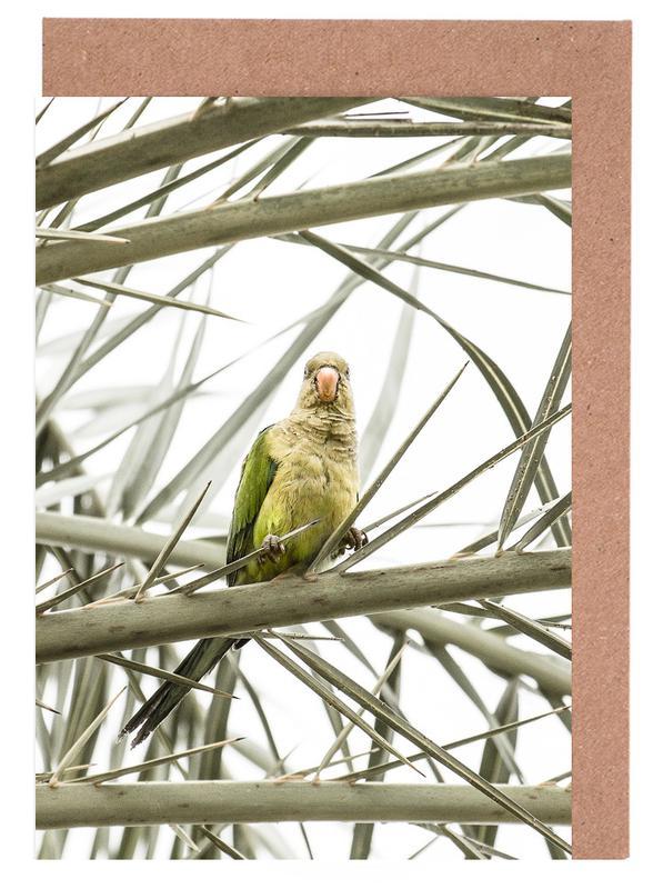Parrots, Parrot Greeting Card Set