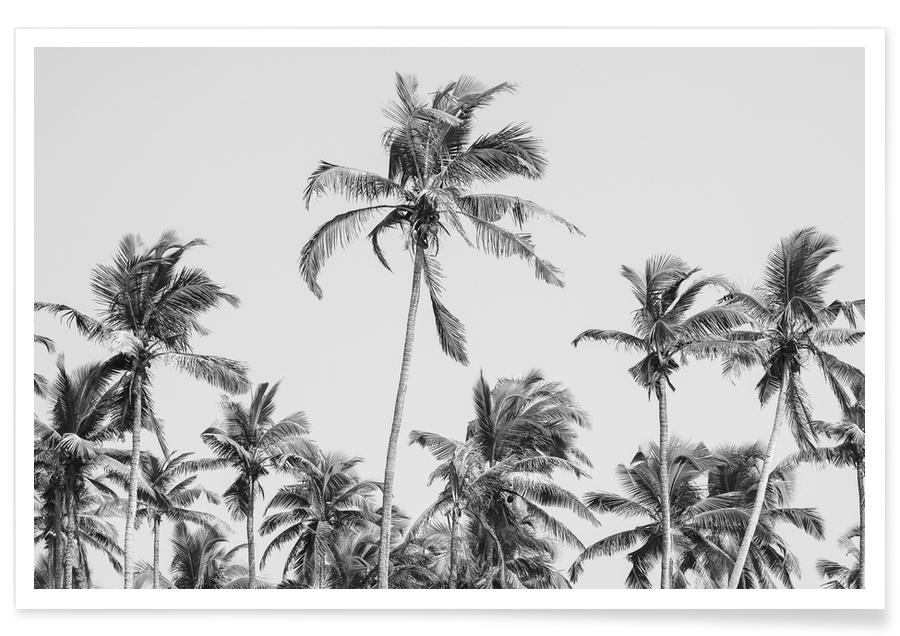 Beaches, Palm Trees On The Beach 3 Poster