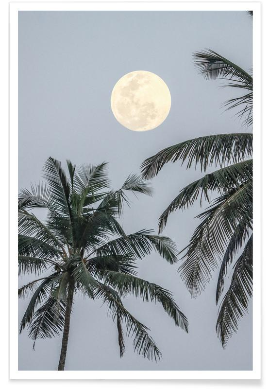 Lune, Palmiers, Full Moon affiche