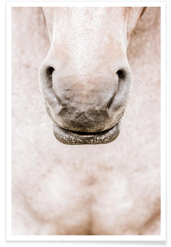Horses, On The Nose Poster