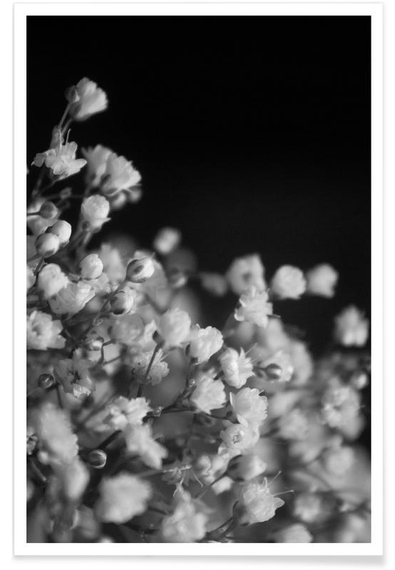 Schwarz & Weiß, Bloom I -Poster