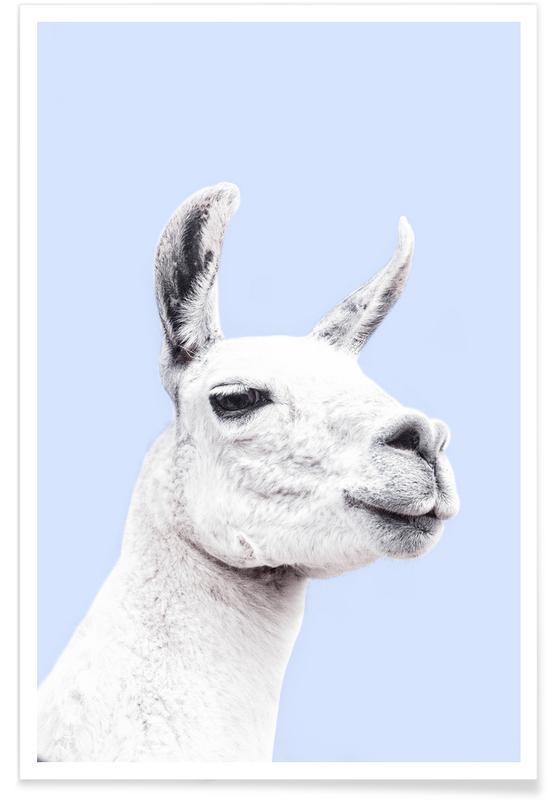 Lama, Kinderzimmer & Kunst für Kinder, Blue Llama II -Poster
