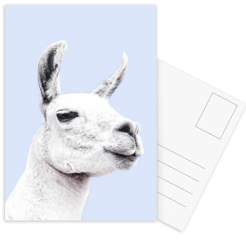 Blue Llama II cartes postales