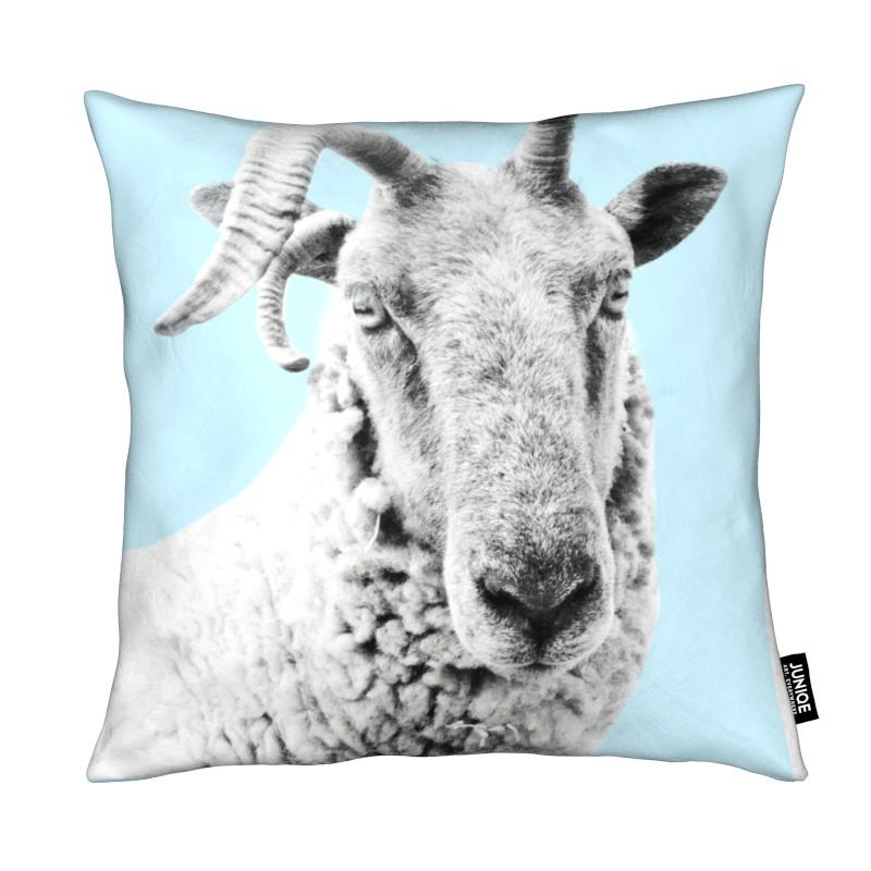 Blue Sheep coussin