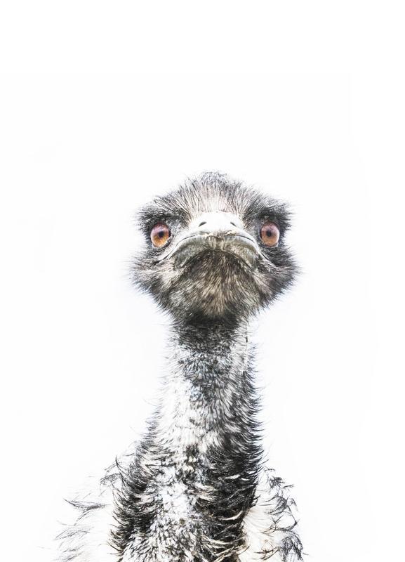 Emu toile