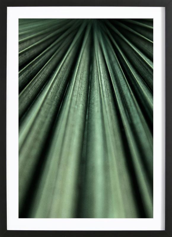 Green Palm Framed Print