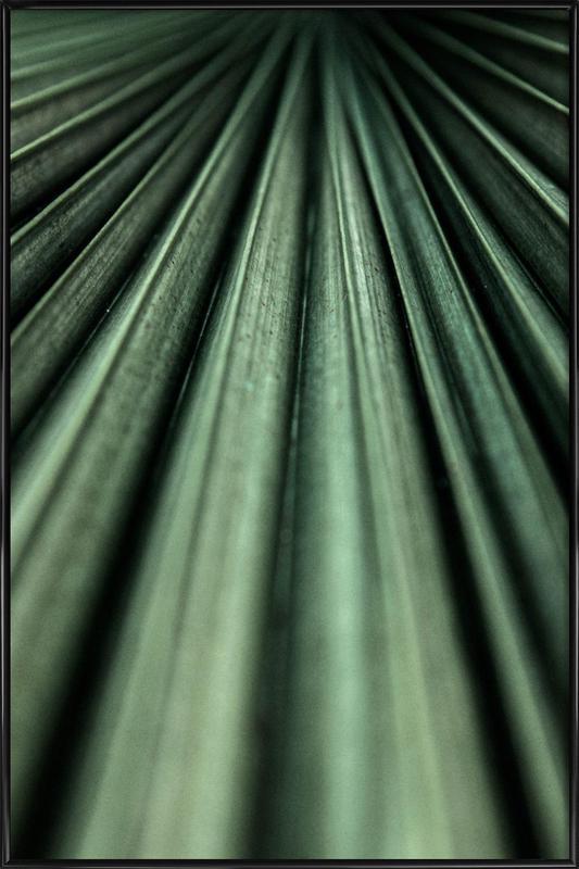 Green Palm Framed Poster