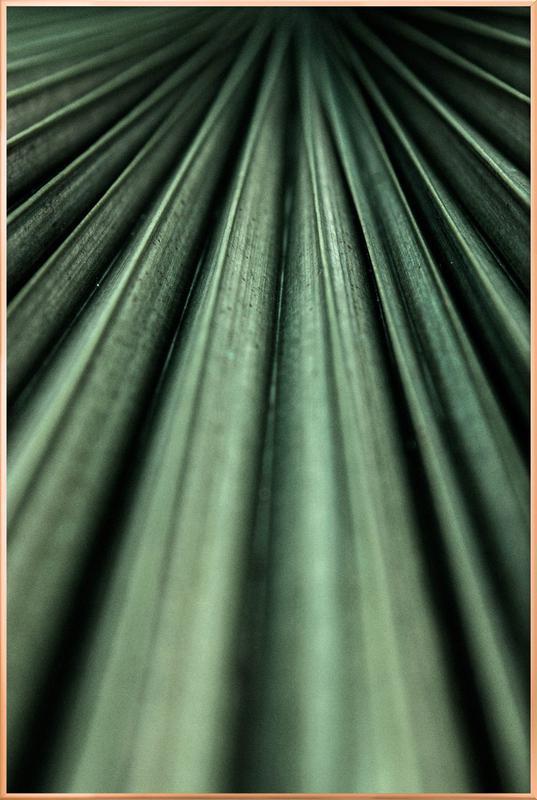 Green Palm poster in aluminium lijst