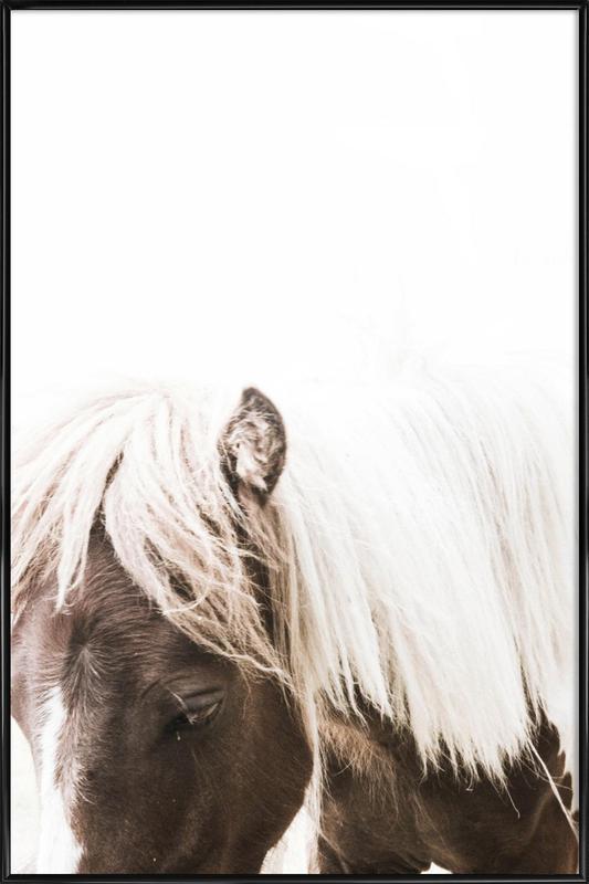 Horse II affiche encadrée