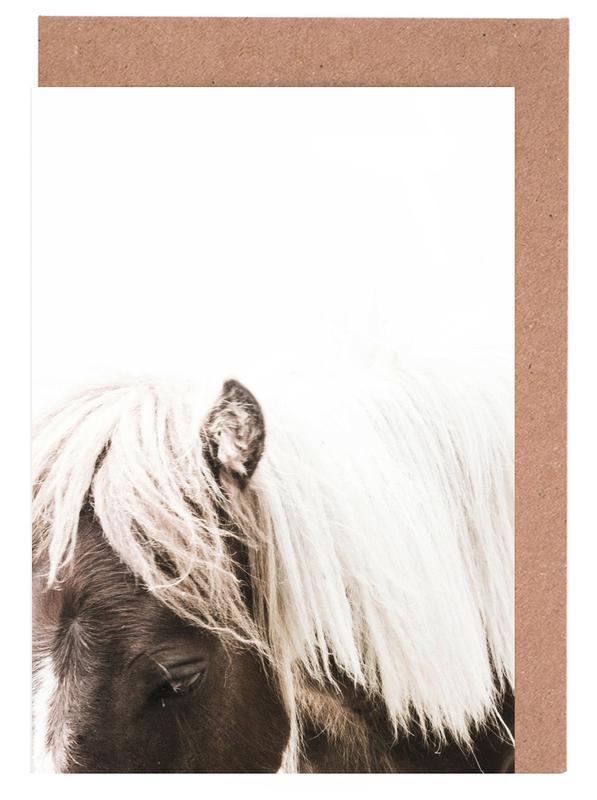Pferde, Horse II -Grußkarten-Set
