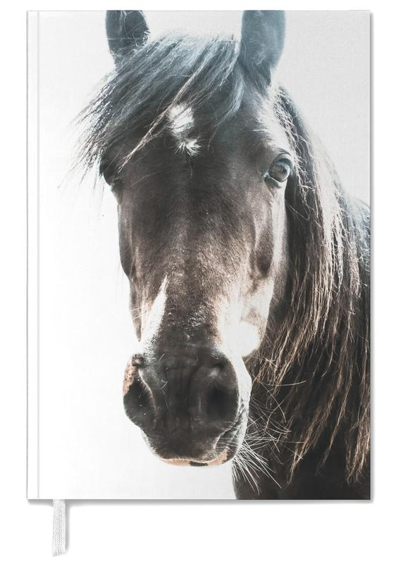 Horse -Terminplaner