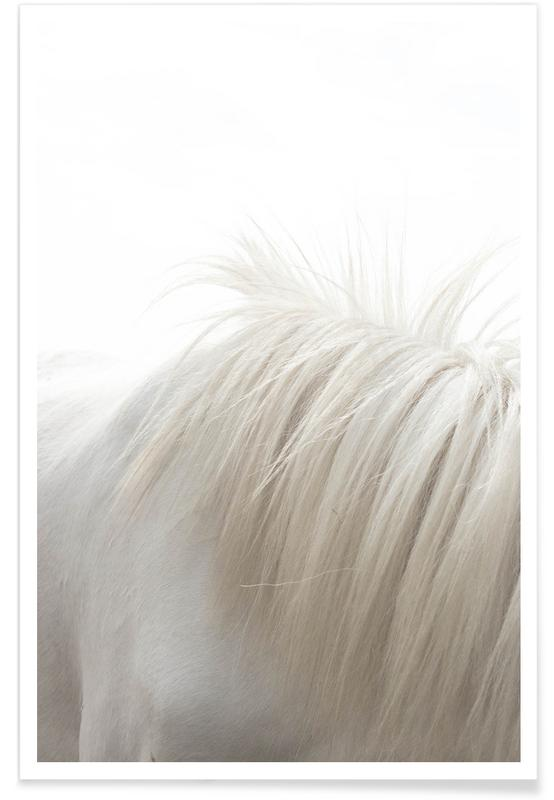 Horses Mane affiche