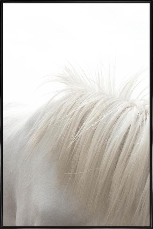 Horses Mane -Bild mit Kunststoffrahmen