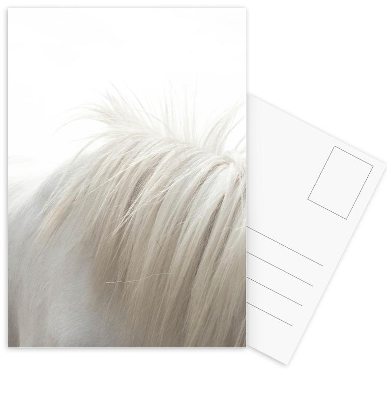 Horses Mane cartes postales