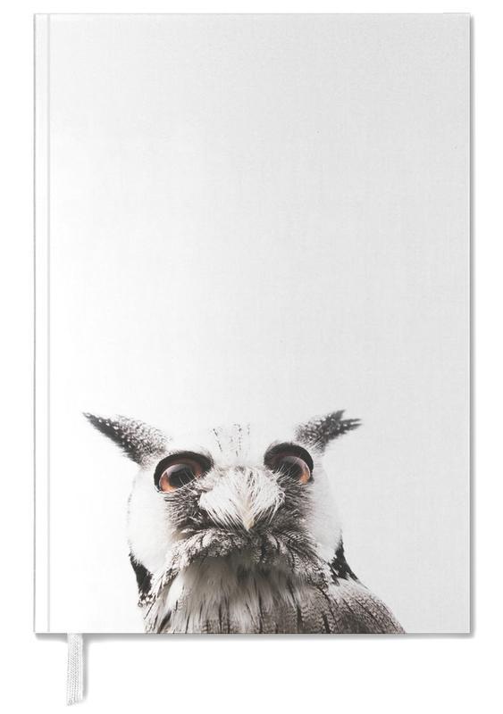 Lil Owl agenda