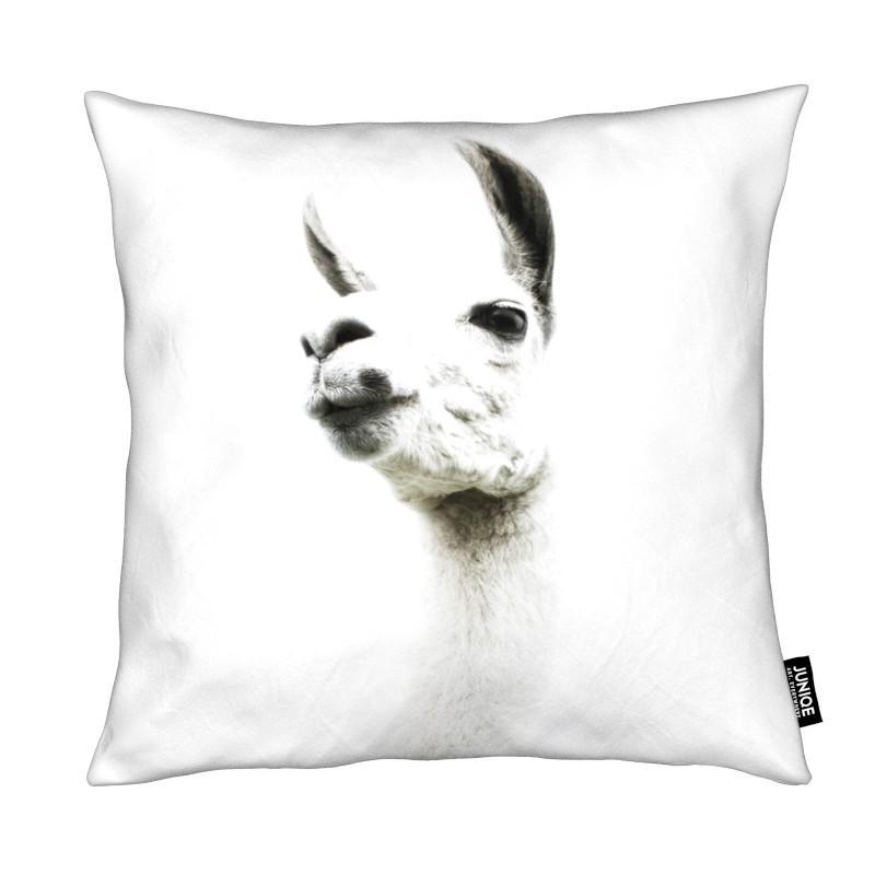Lamas, Llama I coussin