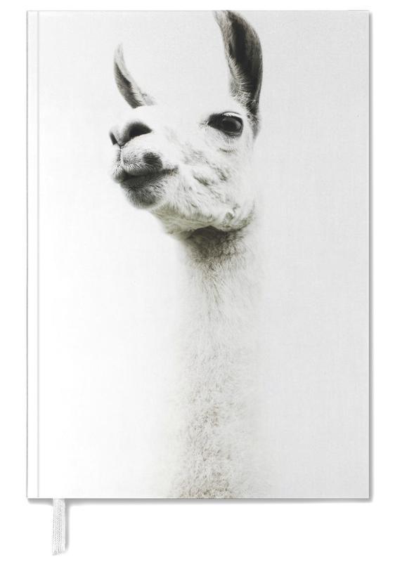 Llamas, Llama I Personal Planner