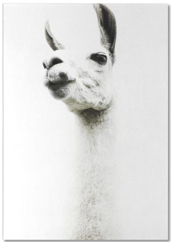 Lama, Llama I -Notizblock