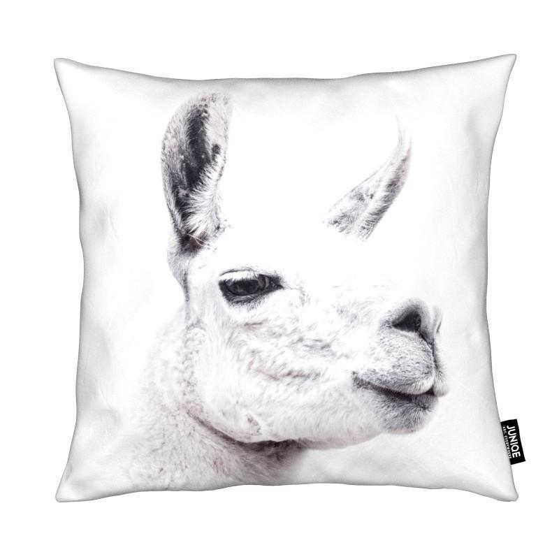 Lamas, Llama II coussin