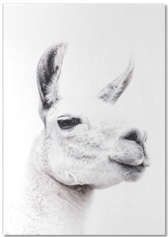 Llama II -Notizblock