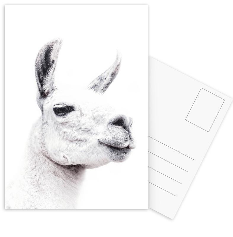 Llama II cartes postales