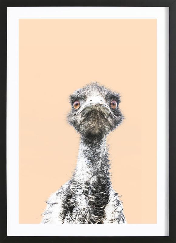 Orange Emu affiche sous cadre en bois