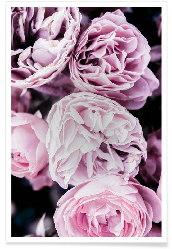 Pink flowers II -Poster