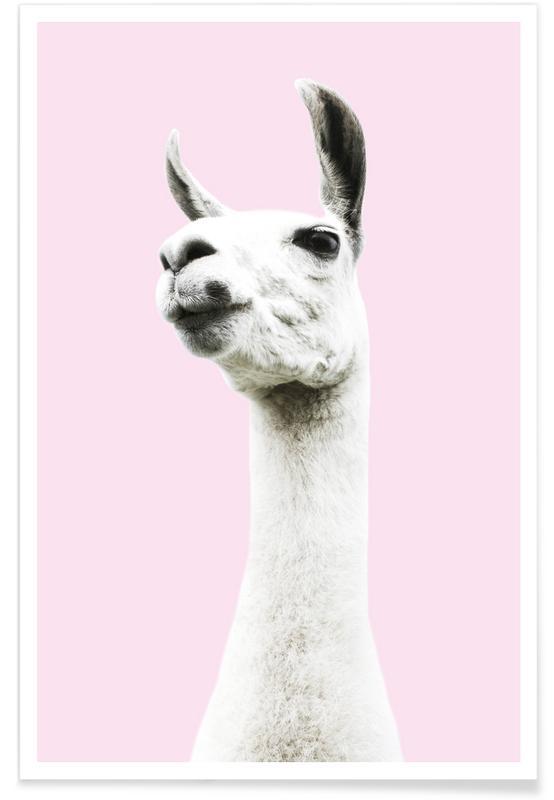 Llamas, Nursery & Art for Kids, Pink Llama Poster