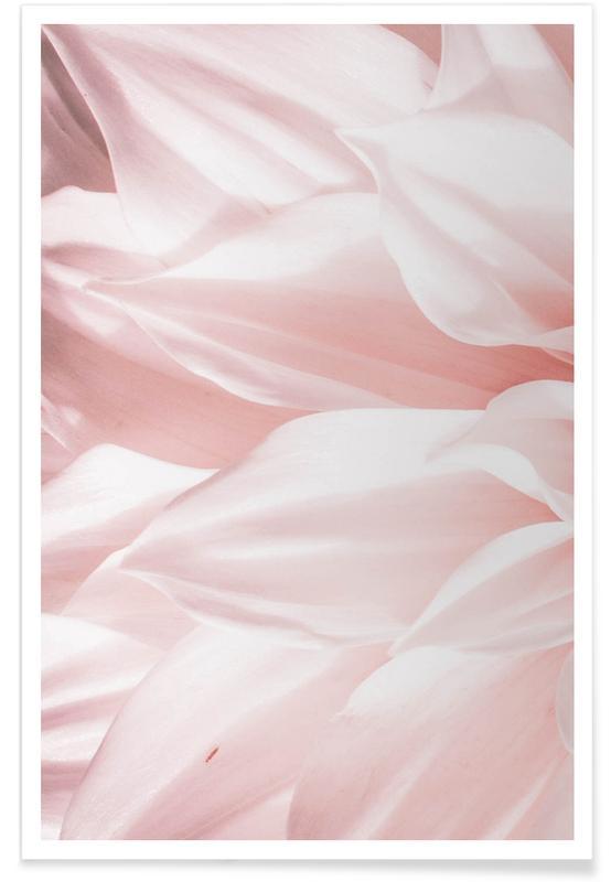 Pink Petals -Poster