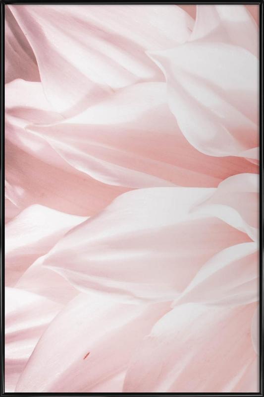 Pink Petals affiche encadrée