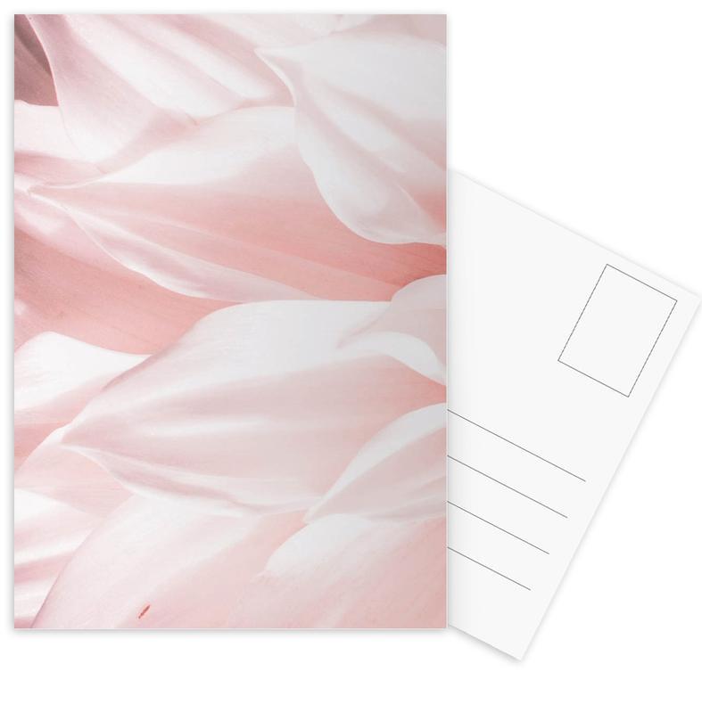 Pink Petals Postcard Set