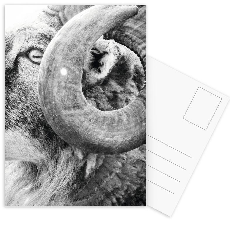 R.A.M. III cartes postales
