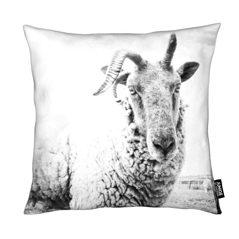 , Sheep II coussin