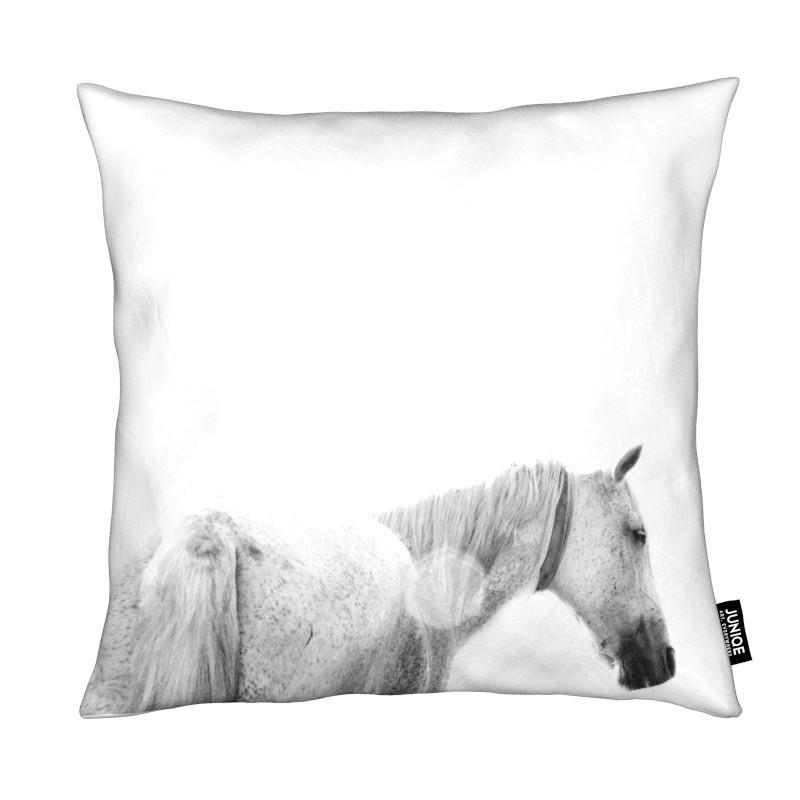 Black & White, Horses, Horses Back