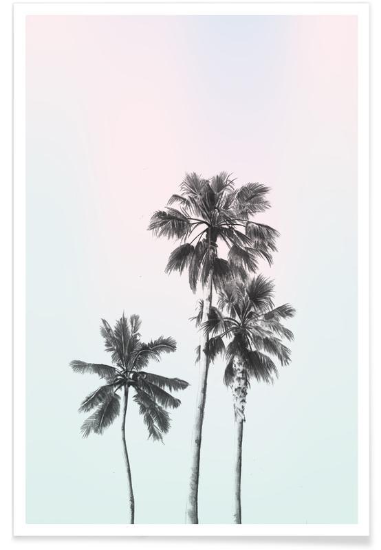Palms, Three Palms Poster